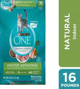 Purina One Indoor Dry Cat Food