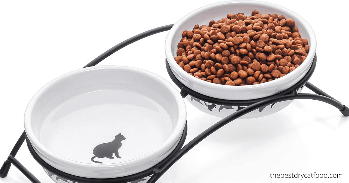 best dry cat for indoor cats buying guide