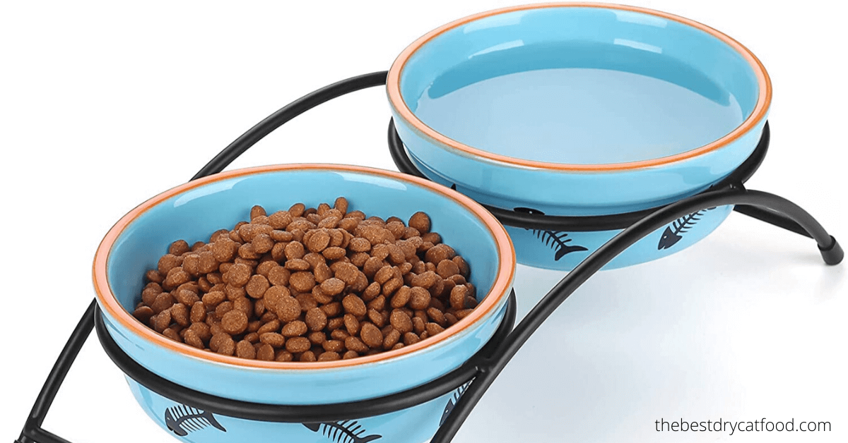 best dry cat food full buyer guide