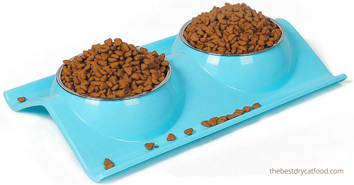 best high protein dry cat food buying guide