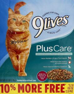 9Lives Plus Care Dry Cat Food for Urinary Tract Health