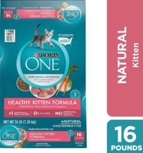 Purina One Dry Kitten Food