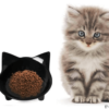 best dry kitten food reviews